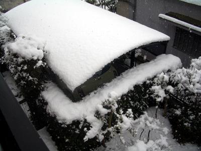 snow060121.jpg